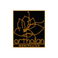 Ortholan Montpellier